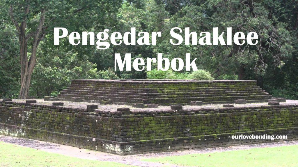 shaklee-merbok